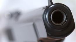 Открыл огонь ибросил гранаты: что известно острелке изПодмосковья?