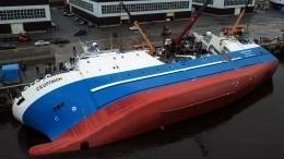 Чем закончилась спасательная операция наверфи «Пелла» вЛенобласти?