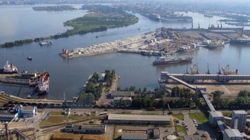 Власти изучат проект попереносу порта изПетербурга за440 миллиардов рублей