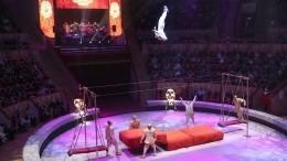 Акробат цирка наФонтанке вПетербурге попал вбольницу после падения скачелей