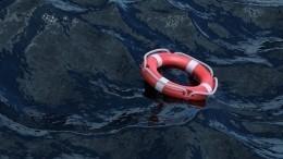 Петербуржец прыгнул смоста вслед затонущим вМалой Невке человеком— видео