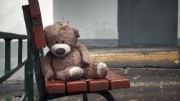 «Еще два дня, иребенокбы погиб»— отец истязаемой под Ростовом девочки
