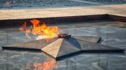 «Так приучили»: жительница Подмосковья объяснила, зачем готовила наВечном огне