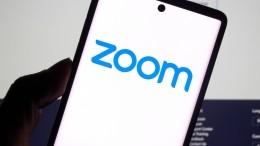 «Готовы клюбой ситуации»: глава Минпросвещения озапрете Zoom для госучреждений