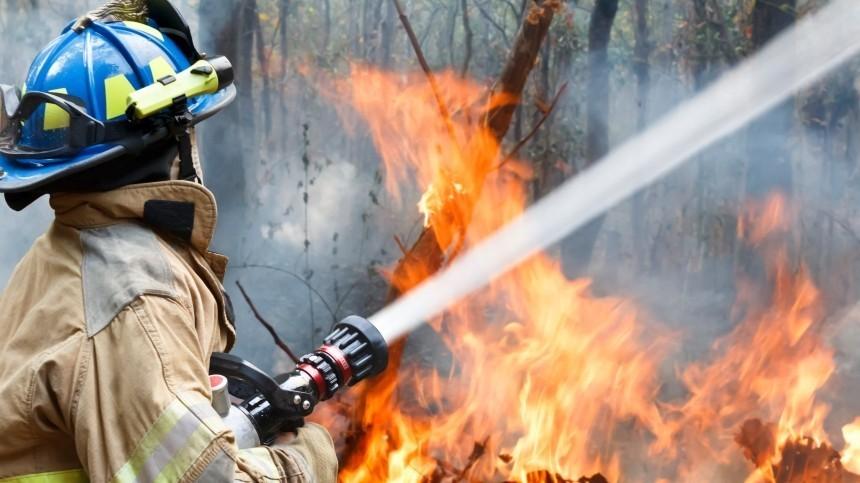 Ранняя весна ускорила начало пожароопасного сезона вРФ