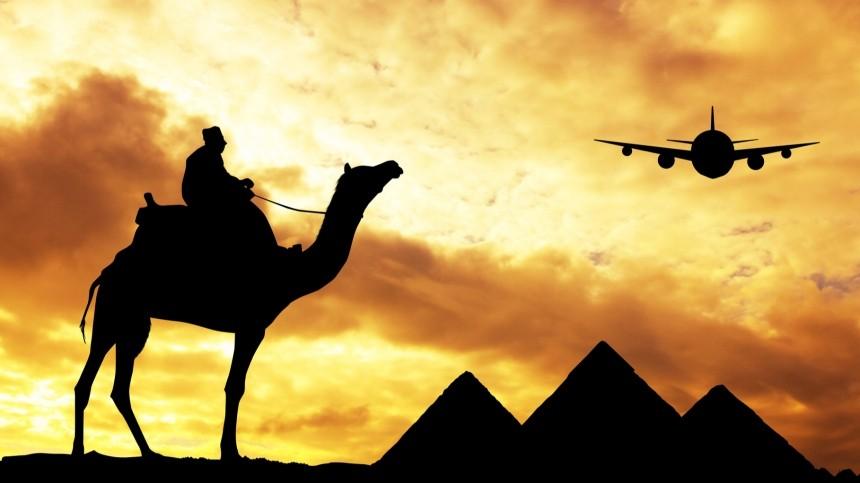 Лавров оценил сроки возобновления полетов наегипетские курорты