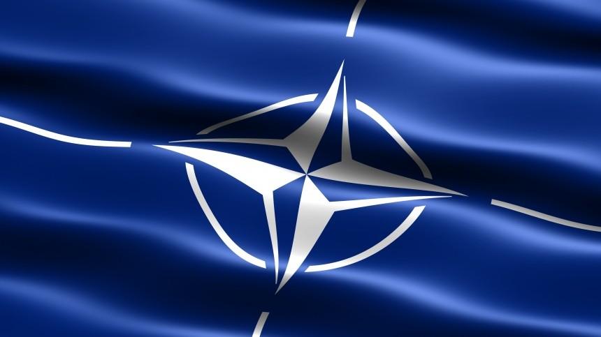 Зеленский попросил США помочь Украине совступлением НАТО