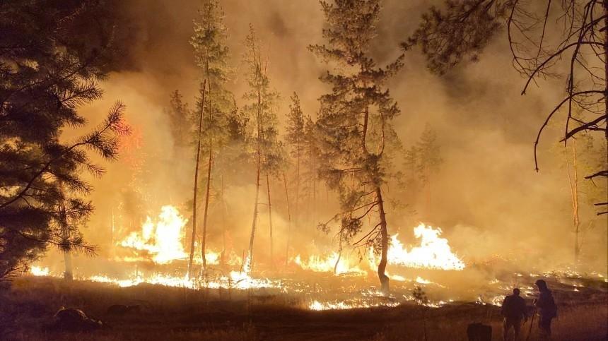 Что стало причиной пожара, уничтожившего дома вселе Мечетка под Воронежем