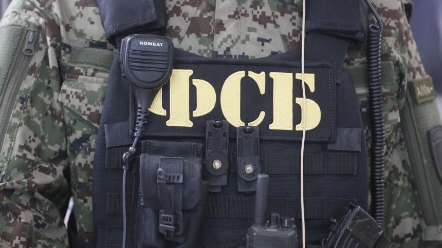 Силовики задержали пособника террористической организации вПетербурге