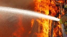 Видео: Пожар охватил семь домов под Екатеринбургом