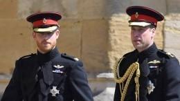 Развели: Уильям иГарри небудут вместе следовать загробом принца Филиппа