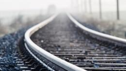 Поезд отрезал головы двум школьницам под Москвой