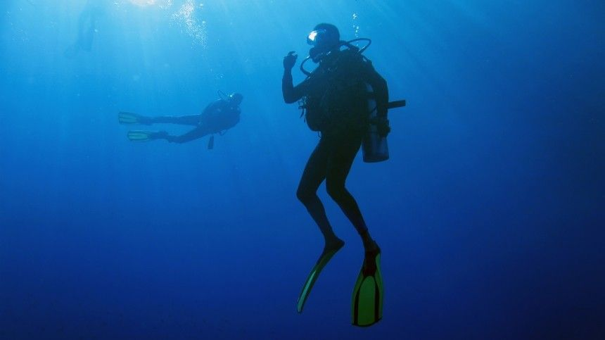 Что скрывает синее море: поразительные находки обнаружены надне Кольского залива