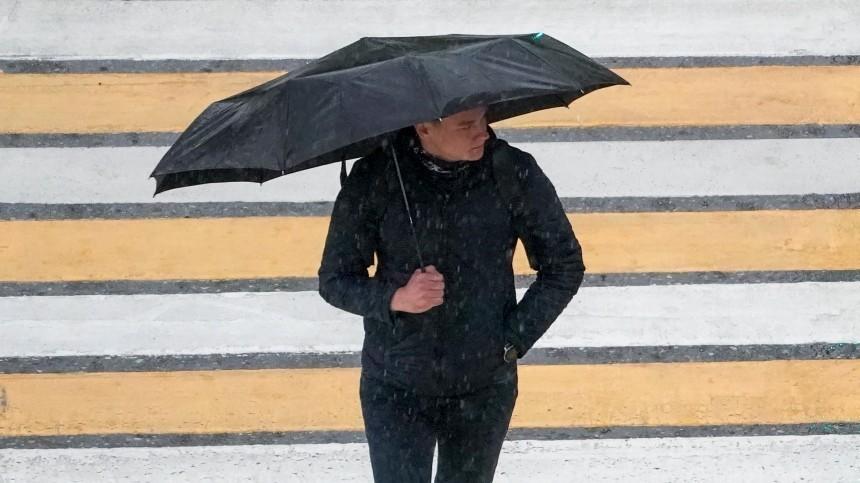 «Погода станет скучной»: вЦФО ожидаются затяжные дожди наследующей неделе