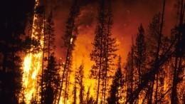 Натеже грабли: почему мощные пожары накрывают регионы РФикто вэтом виноват
