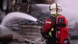 Двое детей иихмать сгорели вбане вПодмосковье