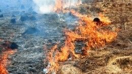 Природные пожары врегионах России близко подобрались кжилым домам