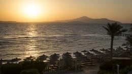 Что известно овозобновлении чартеров сегипетскими курортами?