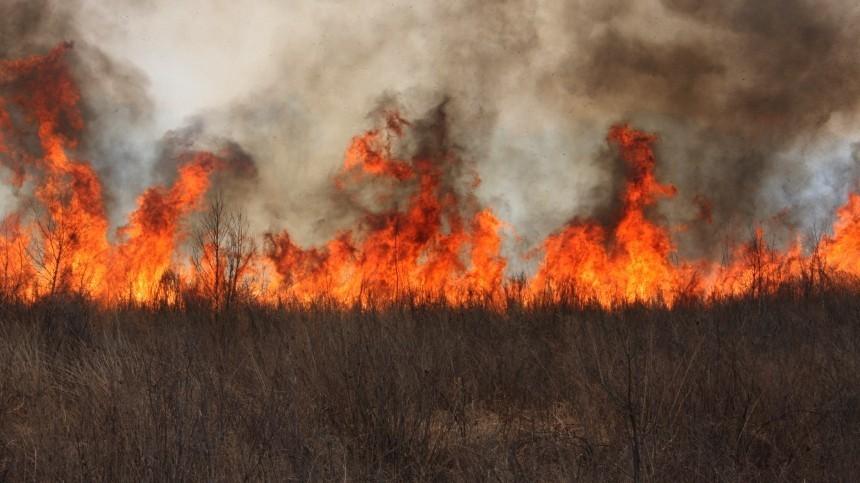 Волгореченск попал вогненное кольцо— видео сместа напоминают фильм-катастрофу