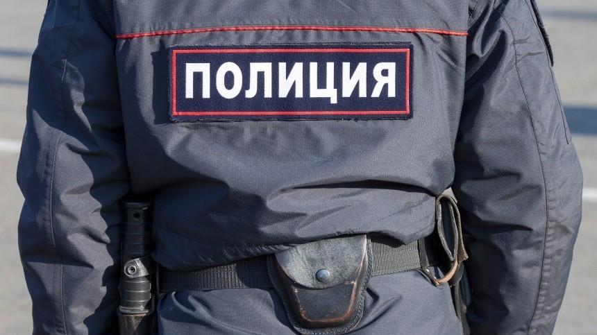 Подросток ссаперной лопатой задержан нанезаконной акции вМоскве