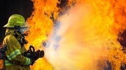 Пожар произошел натерритории завода «Севкабель»