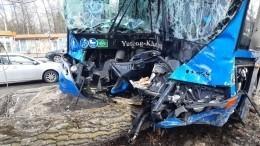 Хабаровский автобус превратил подрезавшую его легковушку вгруду металла— фото