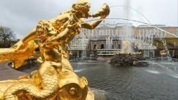 Фонтанам 300лет! Музей-заповедник «Петергоф» открыл юбилейный летний сезон
