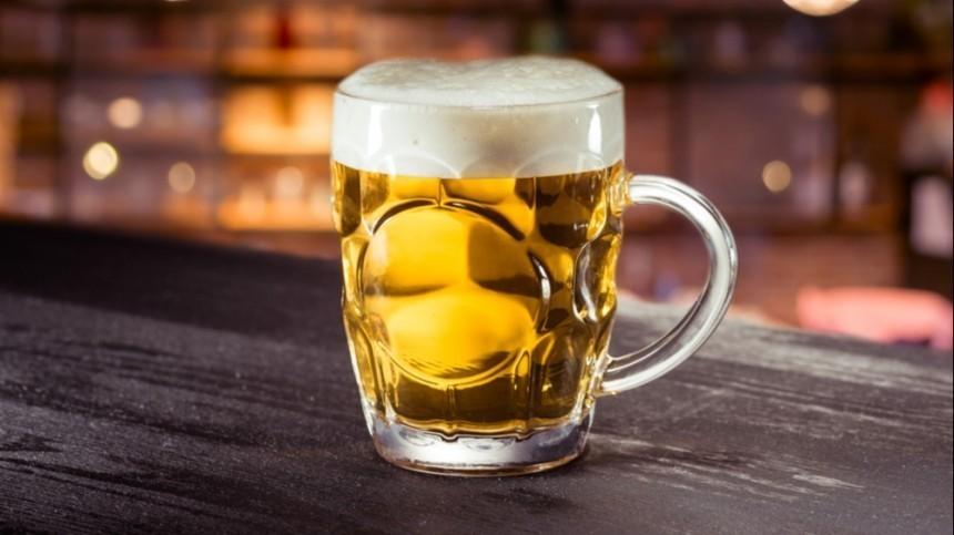 Пена дней: производители предсказали последствия запрета наимпорт чешского пива