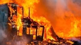 Итлеют пожары: как поджигатели травы превращают русские деревни впепелища?