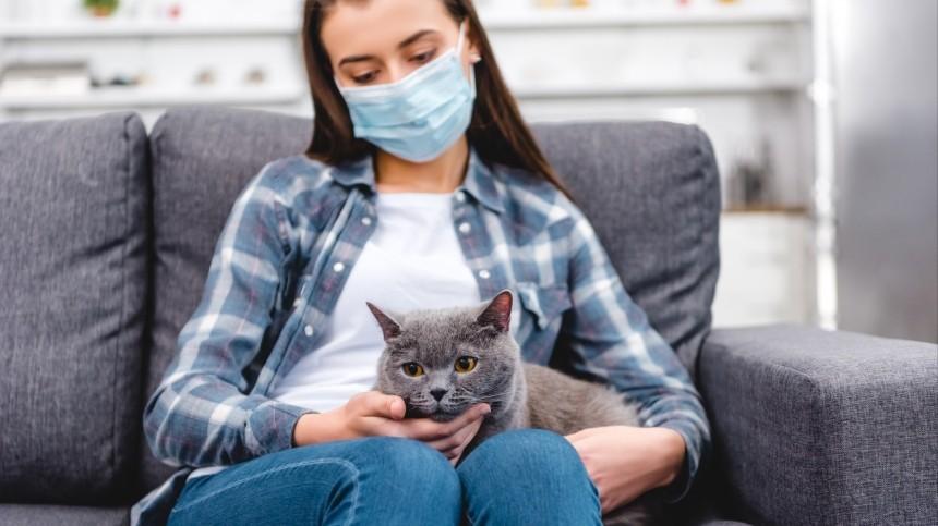 Вирусологи назвали скрытую причину создания вакцины отCOVID-19 для животных