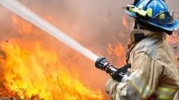 Природный пожар практически парализовал движение натрассе под Тюменью