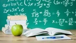 Как школьники, студенты ивоспитанники детсадов будут отдыхать намайские праздники
