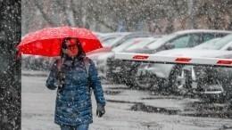 Апрельские снегопады удивили жителей Центральной России
