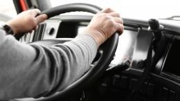 Гнал повстречной иругался матом: неадекватный водитель автобуса попал навидео