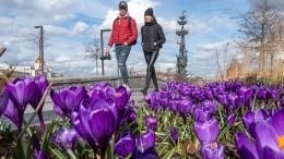 Вкаких регионах России кмайским праздникам добавят еще один выходной