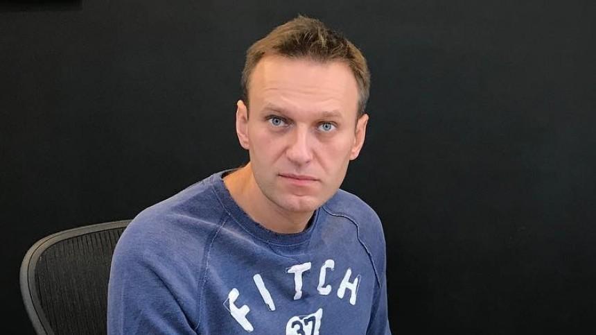 Новое уголовное дело возбуждено вотношении Навального илидеров ФБК*