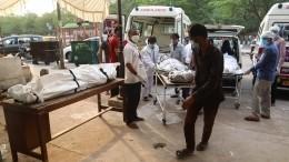 Борьба сCOVID-коллапсом: Индия начнет прививать население «Спутником V»
