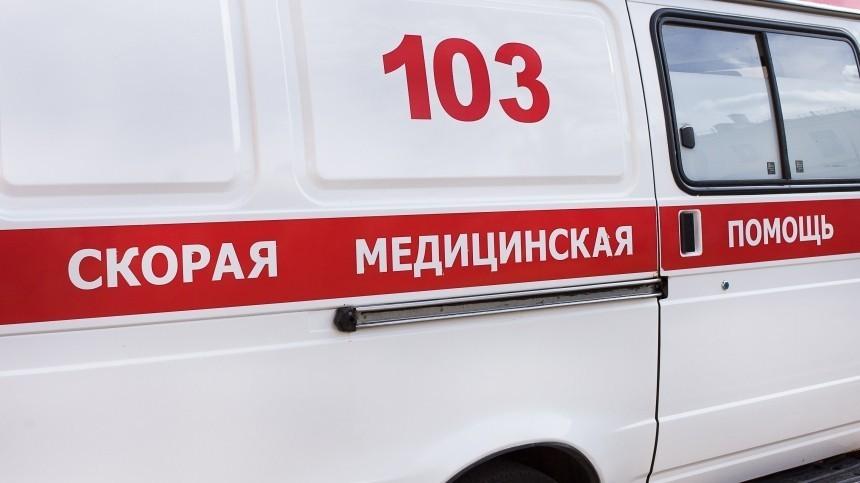 Шестеро детей погибли вДТП сКАМАЗом имикроавтобусом наСтаврополье