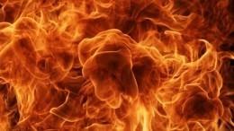 ВДушанбе 29 человек пострадали при мощном взрыве наАЗС— видео