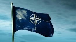 ВШвеции назвали позором соглашение страны сНАТО