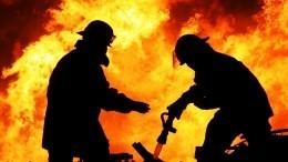 Разогревали еду испалили квартиру: двое подростков погибли при пожаре вЛенобласти