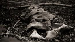 Расчлененное тело нашли всумке под Петербургом