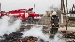 Видео: страшный пожар уничтожил половину деревни под Омском