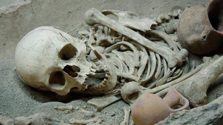 Эксклюзивные кадры: груду черепов икостей нашли настройке вЛенобласти