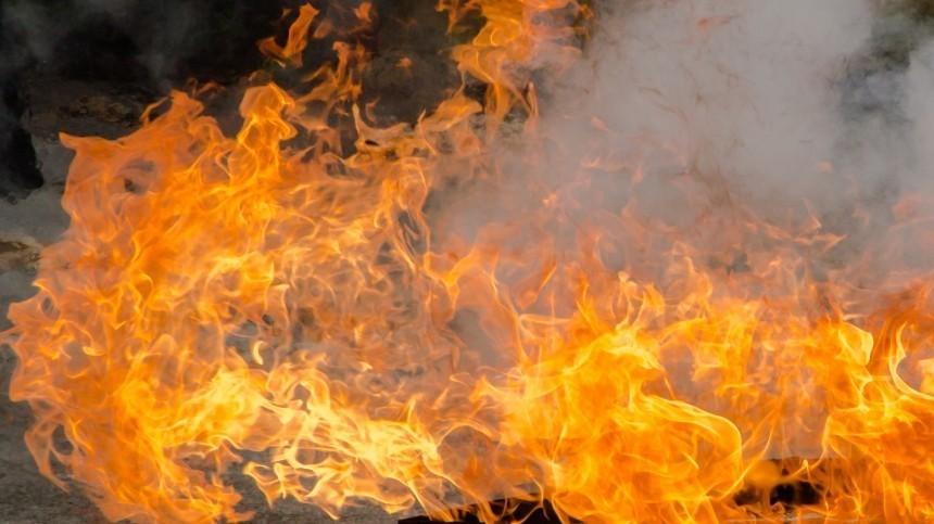 Полицейский изПензы застрелил, расчленил ипытался сжечь тело уголовника