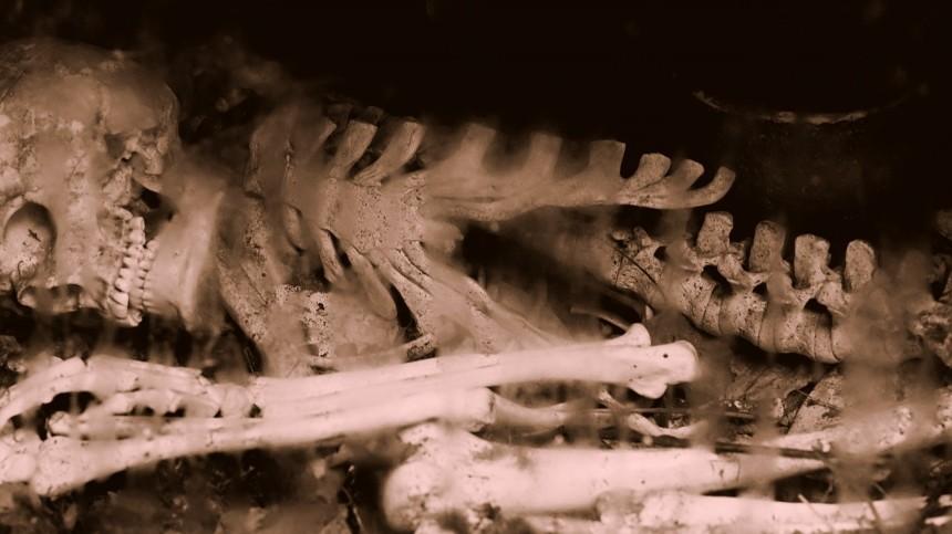 Мешок скостями нашли водном изпарков Петербурга