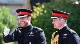 Принцы Уильям иГарри отказались выступать вместе наоткрытии памятника матери