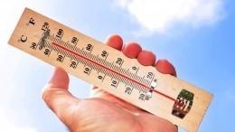 Россиян ждет аномальное тепло всю неделю