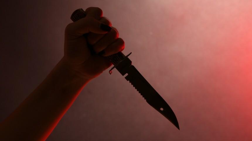 Расчлененное тело женщины нашли всумке вгостинице вПодмосковье