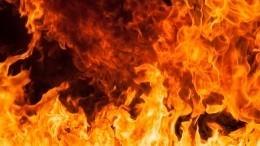 ВПетербурге почти дотла выгорел автосервис. Владелец погиб